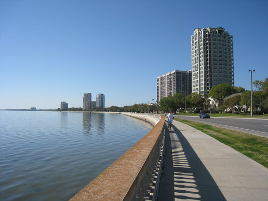 Bayshore Beautiful